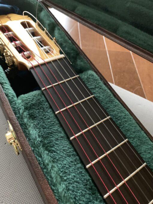 アクイーラ シュガーをギターに張る