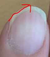 人差し指の爪の形と弾く方向