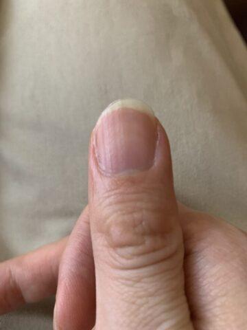 クラシックギター用の指の爪の形